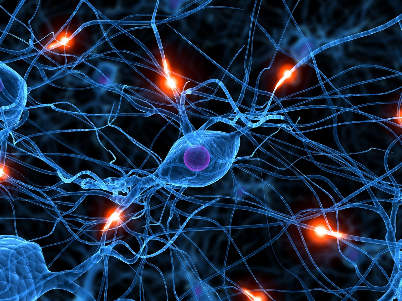 Brain-Synapse-Wallpaper