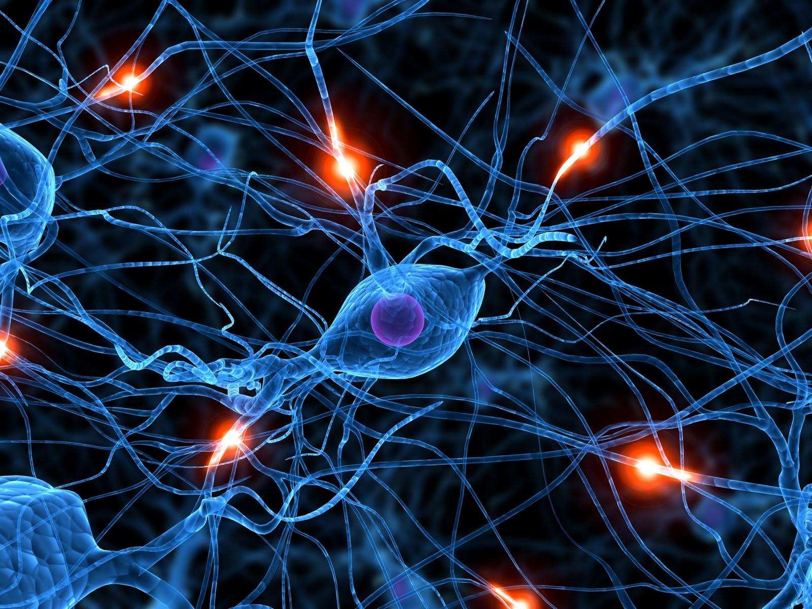 Brain-Synapse-Wallpaper